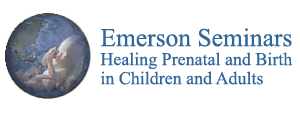 Emerson Seminars